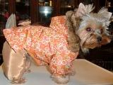 Одежда для собак оптом и в розницу