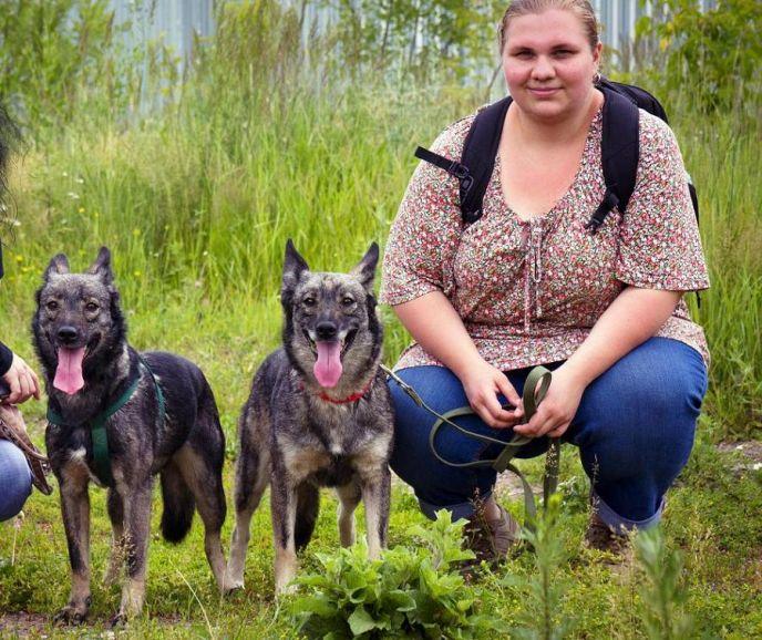 Печальная история двух сестер Ляли и Лили. Серые незаметные близняшки, волчата