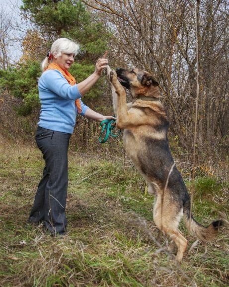 Супер пёс для души и охраны