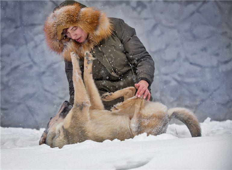 Чудесный щенок Сноу ищет семью