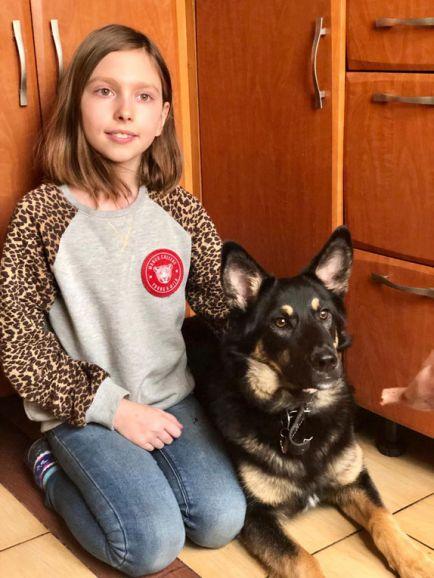 Ищу дом и ответственных людей для щенка-подростка по кличке Альфа