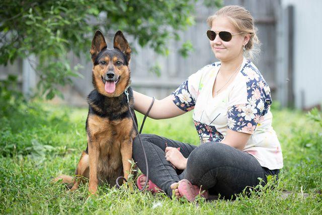 Эльза – собака с непростой судьбой в поиске дома и семьи