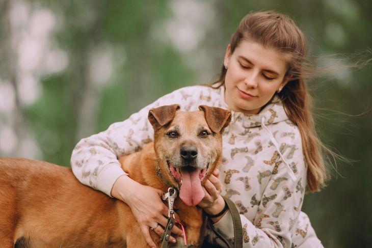 Приютский пес Бисмарк ищет дом