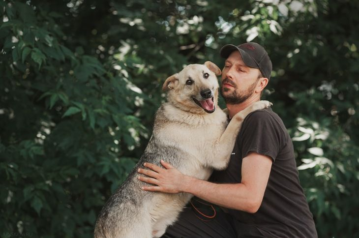 Приютский пес Дюшес ищет дом