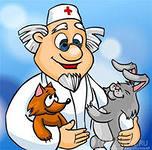 Ветеринарные услуги в Пушкино