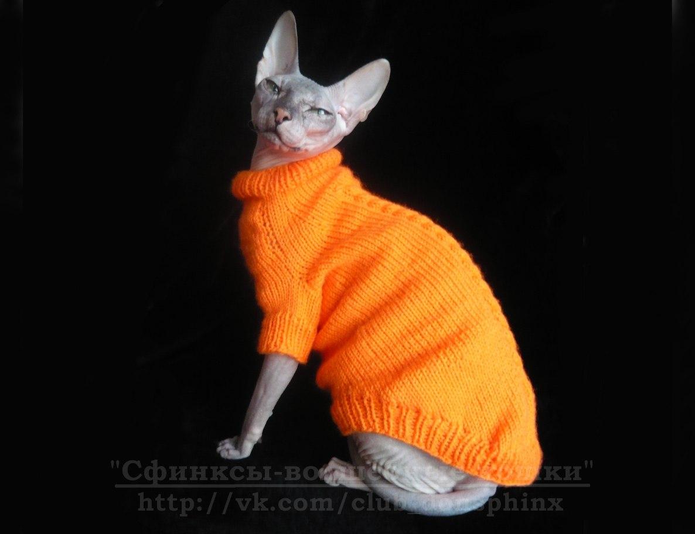 Вязанный свитер для кота