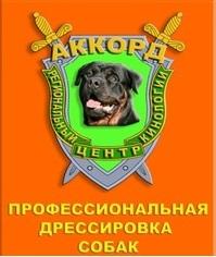 """Региональный центр кинологии """"Аккорд"""""""