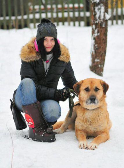 Надёжный и благородный Грэм - крупный пес в добрые руки